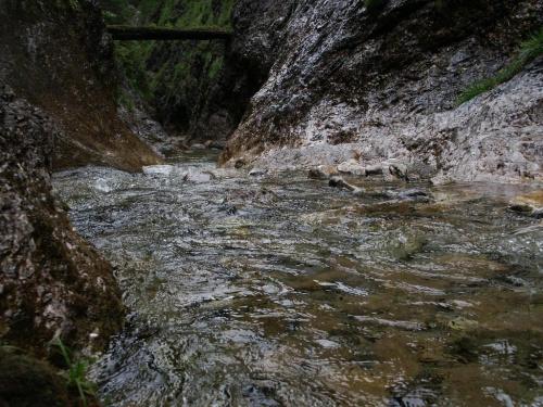 Tatry Zachodnie - Tiesnavy - Juranov potok #góry #masyw #mountain #Tatry #Zachodnie #Tiesnavy #Ciesniawa #Ciesniawy