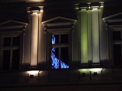 Pelikan 14 #okno