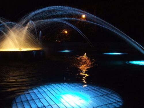Pelikan 12 #fontanna