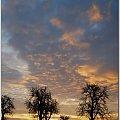 Kiedy ranne wstają zorze... #wschód #niebo #słońce #zorze #ranek #krajobrazy