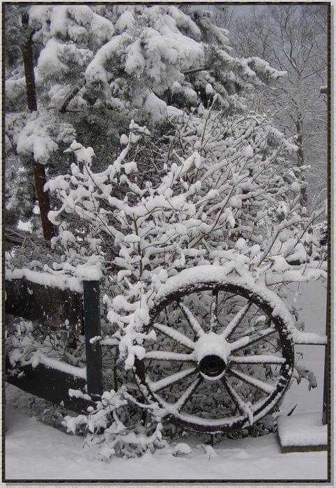 Koło graniaste, czterokanciaste... no - może nie do końca :) #zima #krajobrazy #rośliny #śnieg #płot