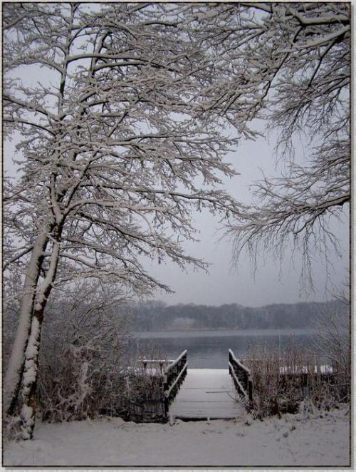 Sennie trochę... Jeszcze dzień na dobre nie wstał.... #zima #krajobrazy #rośliny #śnieg #drzewa #jezioro