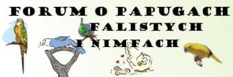 Forum Papugi Faliste i Nimfy Strona Główna